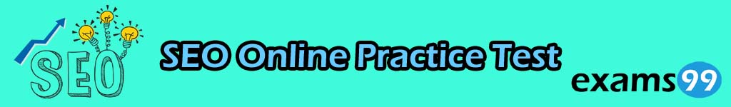 SEO Online Practice Test